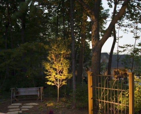 Led Lighting on Trees New Berlin, WI